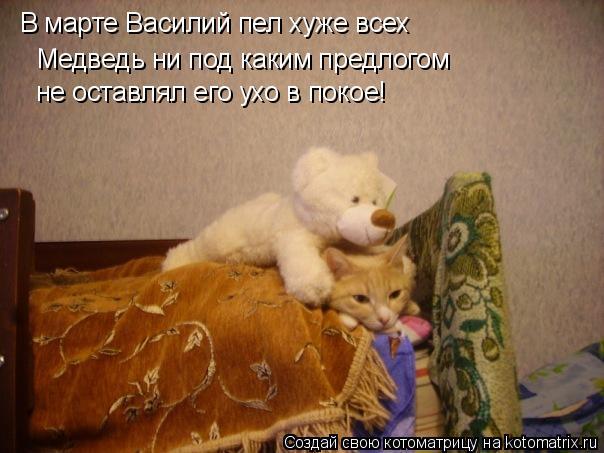 Котоматрица: В марте Василий пел хуже всех Медведь ни под каким предлогом  не оставлял его ухо в покое!