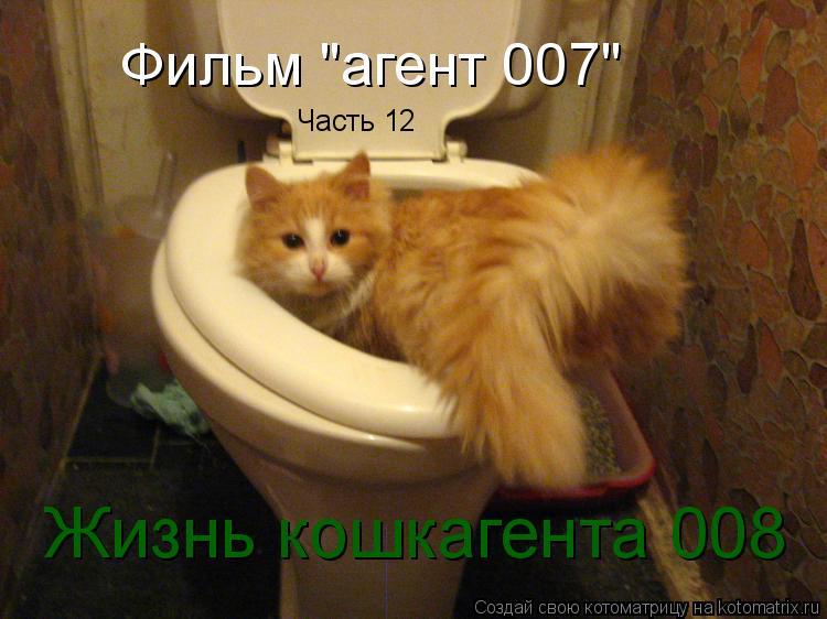 """Котоматрица: Фильм """"агент 007"""" Часть 12 Жизнь кошкагента 008"""