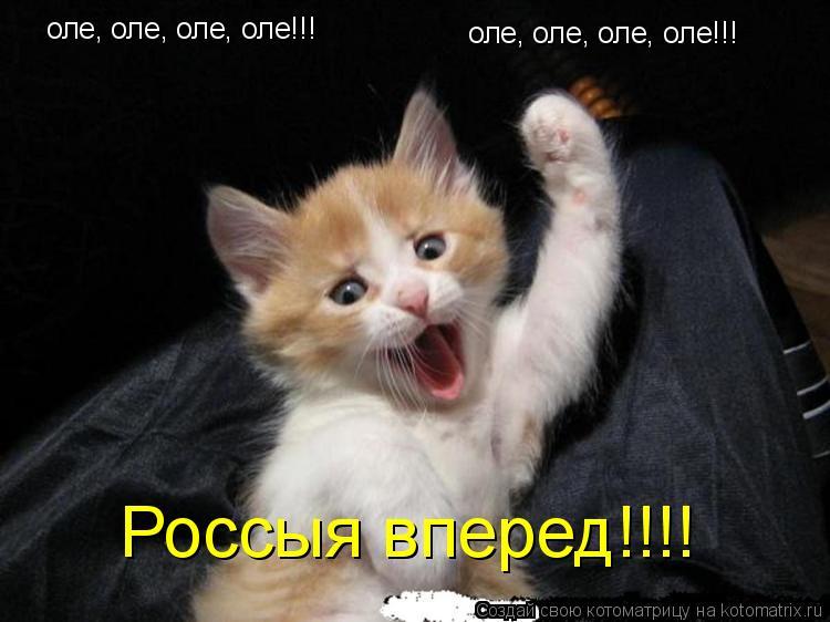 Котоматрица: оле, оле, оле, оле!!! оле, оле, оле, оле!!! Россыя вперед!!!!