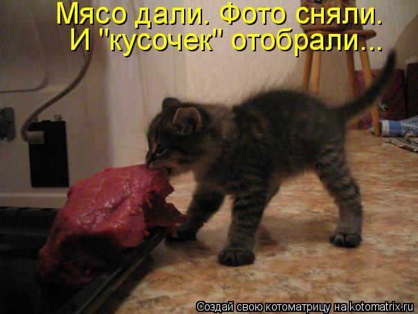 """Котоматрица - Мясо дали. Фото сняли. И """"кусочек"""" отобрали..."""