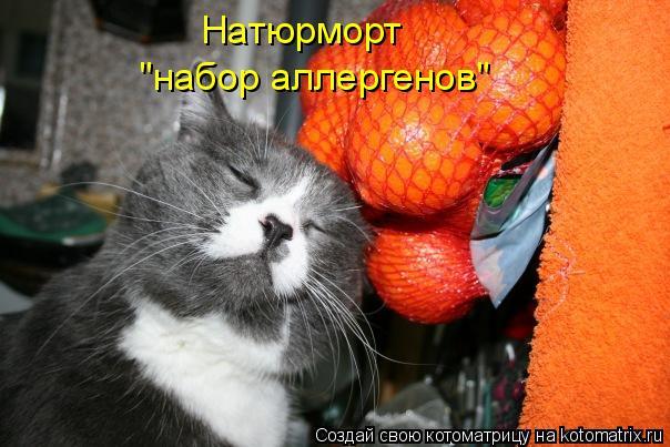 """Котоматрица - Натюрморт """"набор аллергенов"""""""