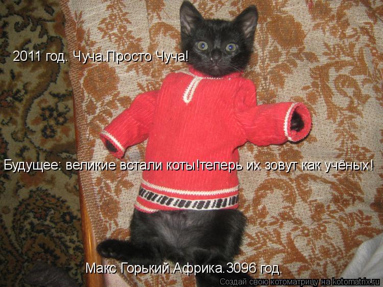 Котоматрица: Макс Горький.Африка.3096 год. Будущее: великие встали коты!теперь их зовут как учёных! 2011 год. Чуча.Просто Чуча!