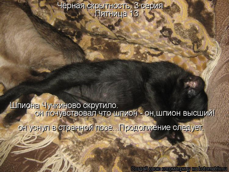 Котоматрица: Чёрная скрытность. 3 серия Пятница 13 Шпиона Чучкиново скрутило. он почувствовал что шпион - он,шпион высший! он уснул в странной позе...Продол