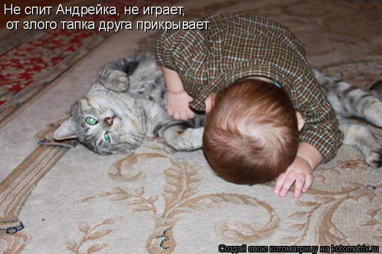 Котоматрица: Не спит Андрейка, не играет,  от злого тапка друга прикрывает.