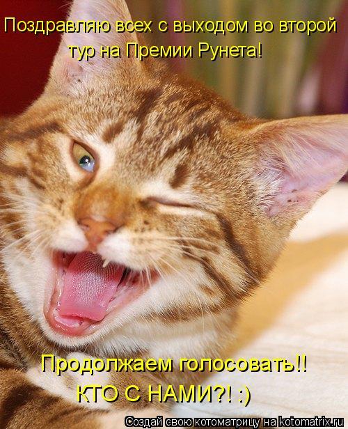 Котоматрица: Поздравляю всех с выходом во второй тур на Премии Рунета! Продолжаем голосовать!! КТО С НАМИ?! :)