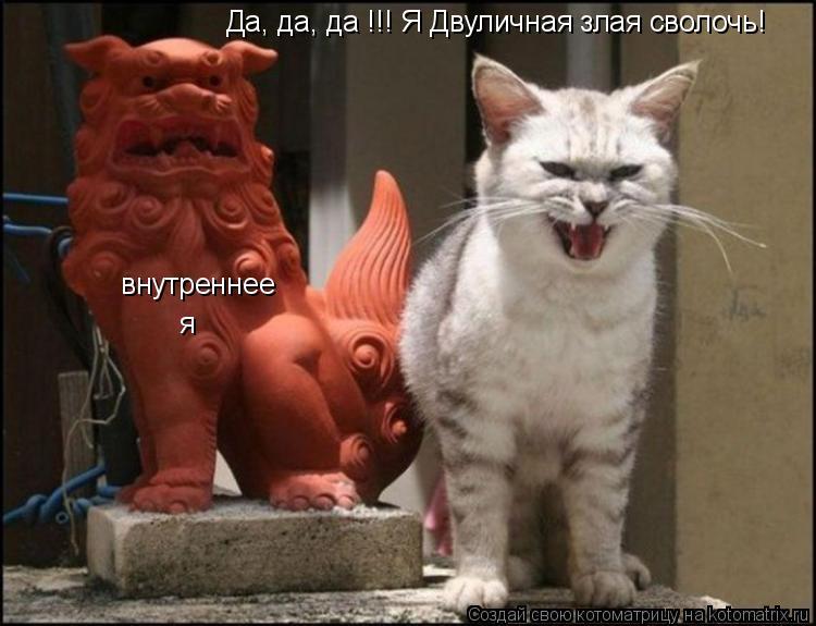 Котоматрица: Да, да, да !!! Я Двуличная злая сволочь! внутреннее я