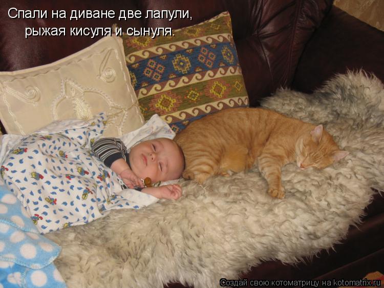 Котоматрица - Спали на диване две лапули, рыжая кисуля и сынуля.