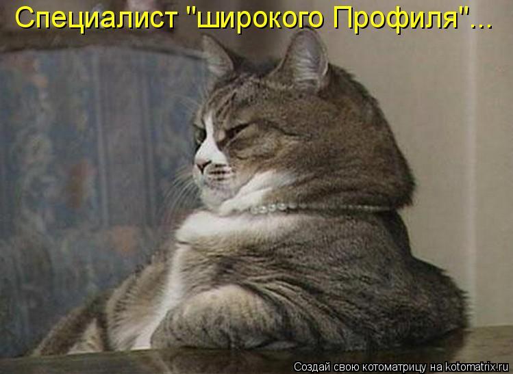 "Котоматрица - Специалист ""широкого Профиля""..."