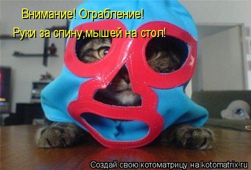 Котоматрица: Внимание! Ограбление!  Руки за спину,мышей на стол!  И никто не пострадает! И никто не пострадает! И никто не пострадает!