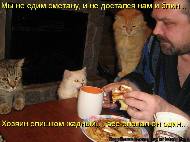 Котоматрица: Мы не едим сметану, и не достался нам и блин... Хозяин слишком жадный,... все слопал он один...