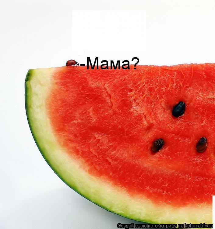 Котоматрица: -Мама?