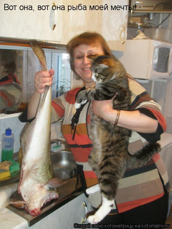 Котоматрица: Вот она, вот она рыба моей мечты!