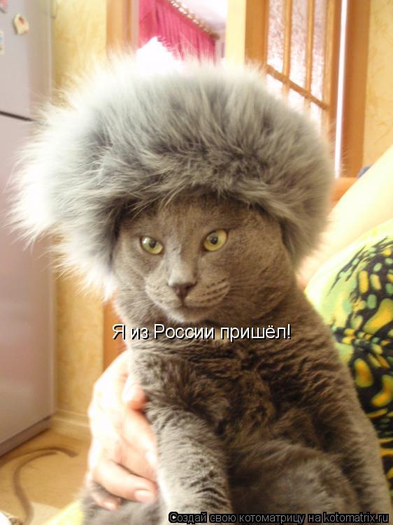 Котоматрица: Я из России пришёл!