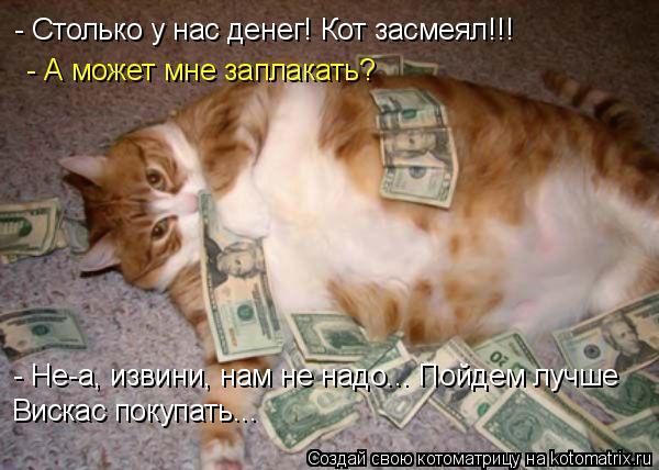 Котоматрица: - Столько у нас денег! Кот засмеял!!!   - А может мне заплакать? - Не-а, извини, нам не надо... Пойдем лучше  Вискас покупать...
