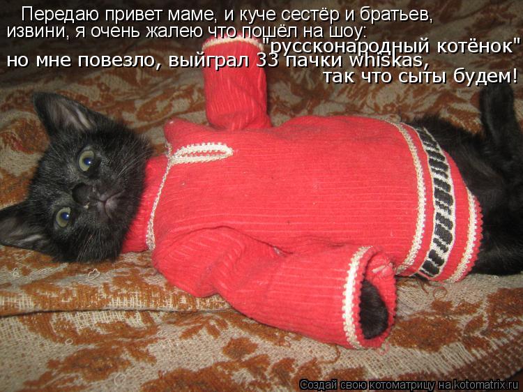 """Котоматрица: Передаю привет маме, и куче сестёр и братьев, извини, я очень жалею что пошёл на шоу: """"руссконародный котёнок"""" но мне повезло, выйграл 33 пачки"""