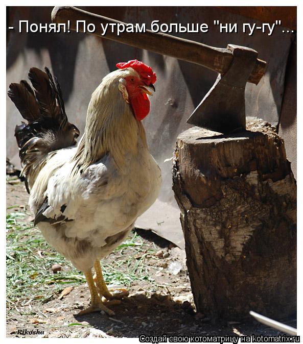 новое лекарство от паразитов в россии