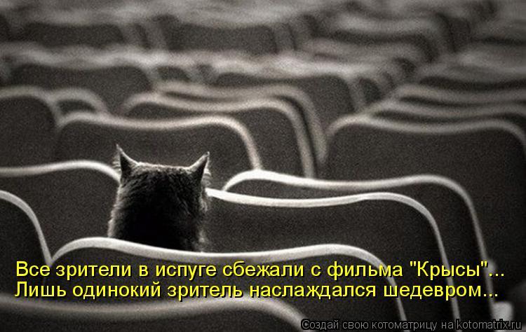 """Котоматрица: Лишь одинокий зритель наслаждался шедевром... Все зрители в испуге сбежали с фильма """"Крысы""""..."""