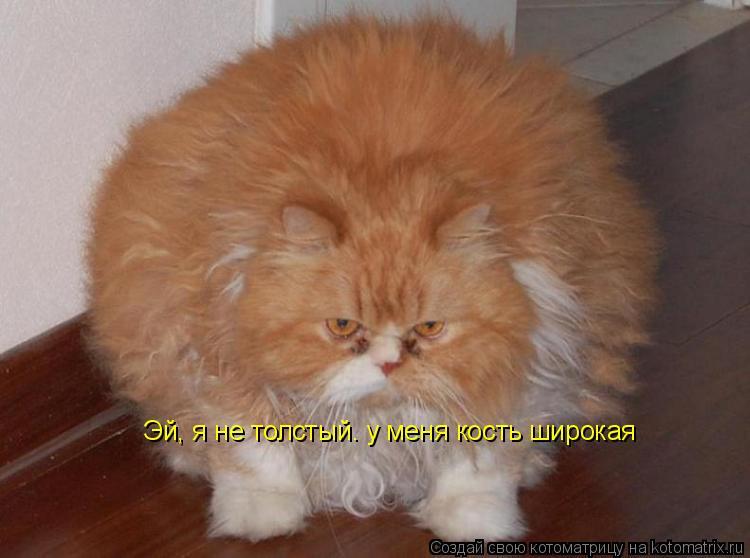 толстый смайлик: