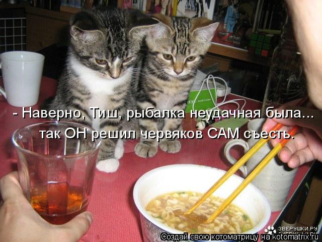 http://kotomatrix.ru/images/lolz/2011/11/14/1038850.jpg