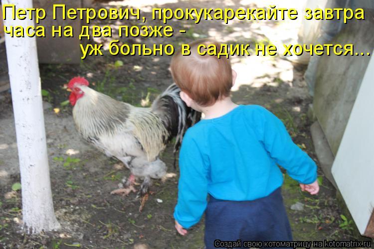 Котоматрица: Петр Петрович, прокукарекайте завтра часа на два позже -  уж больно в садик не хочется...
