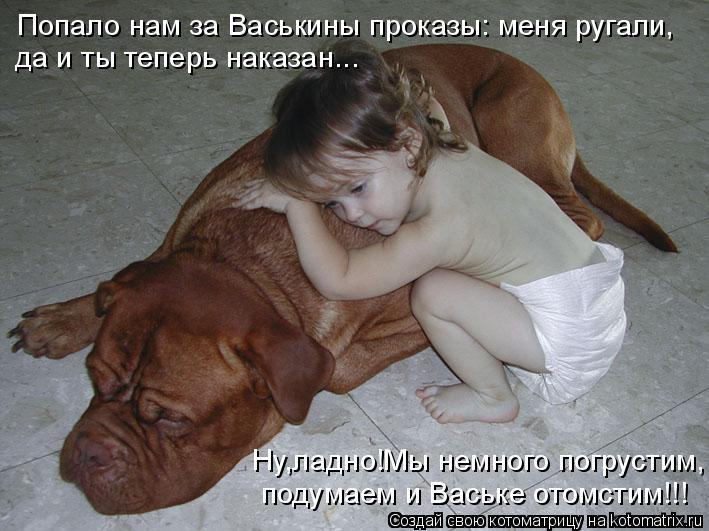 Котоматрица: Попало нам за Васькины проказы: меня ругали,  да и ты теперь наказан... Ну,ладно!Мы немного погрустим, подумаем и Ваське отомстим!!!