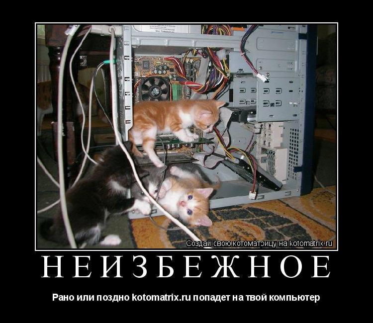 Котоматрица: неизбежное Рано или поздно kotomatrix.ru попадет на твой компьютер