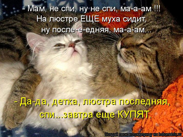 Котоматрица: - Мам, не спи, ну не спи, ма-а-ам !!! ну после-е-едняя, ма-а-ам... спи...завтра еще КУПЯТ. - Да-да, детка, люстра последняя, На люстре ЕЩЕ муха сидит,