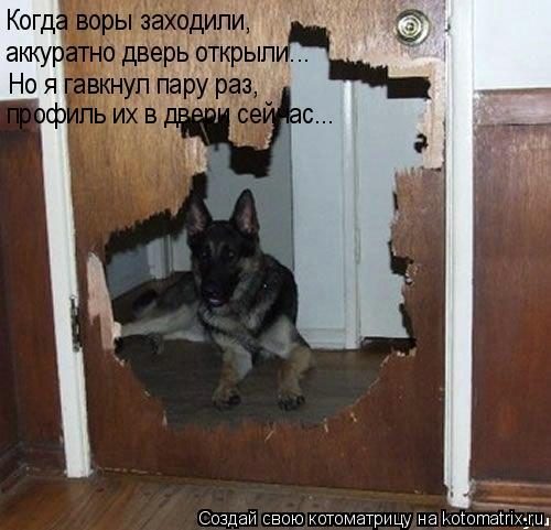 Котоматрица: Когда воры заходили, Когда воры заходили, аккуратно дверь открыли... Но я гавкнул пару раз, профиль их в двери сейчас...