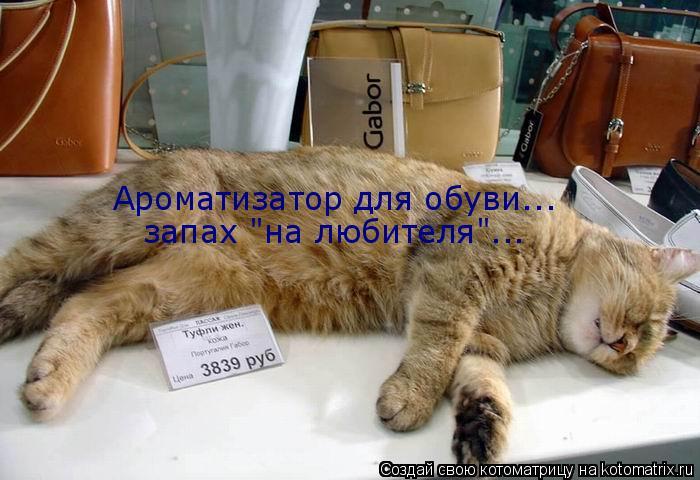 """Котоматрица: Ароматизатор для обуви... запах """"на любителя""""..."""