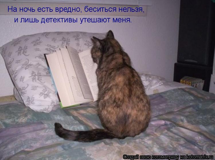Котоматрица: На ночь есть вредно, беситься нельзя, и лишь детективы утешают меня.