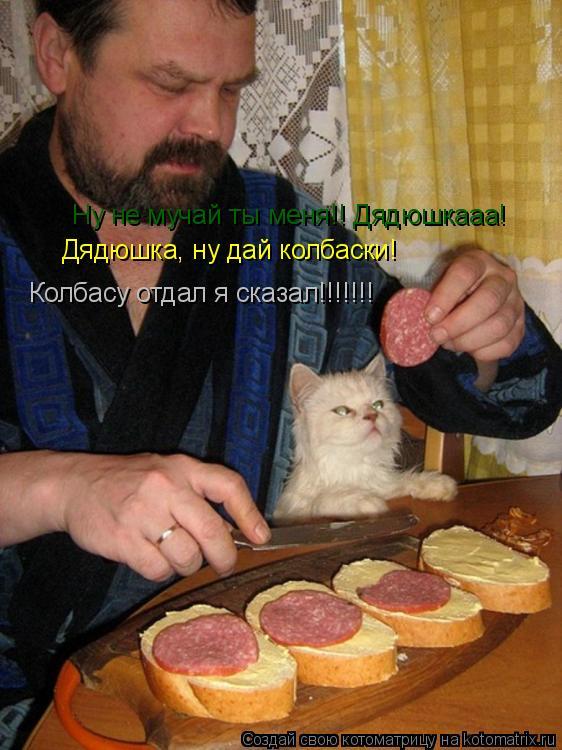 Котоматрица: Дядюшка, ну дай колбаски! Ну не мучай ты меня!! Дядюшкааа! Колбасу отдал я сказал!!!!!!!