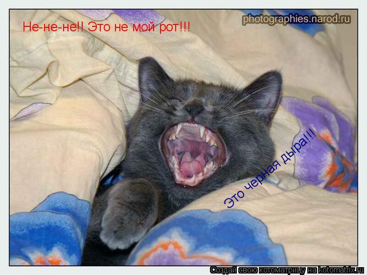 Котоматрица: Не-не-не!! Это не мой рот!!! Это черная дыра!!!