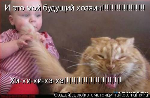 Котоматрица: И это мой будущий хозяин!!!!!!!!!!!!!!!!!! Хи-хи-хи-ха-ха!!!!!!!!!!!!!!!!!!!!!!!!