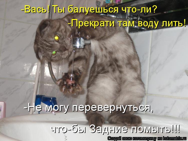 Котоматрица: -Вась! Ты балуешься что-ли? -Прекрати там воду лить! -Не могу перевернуться, что-бы Задние помыть!!!