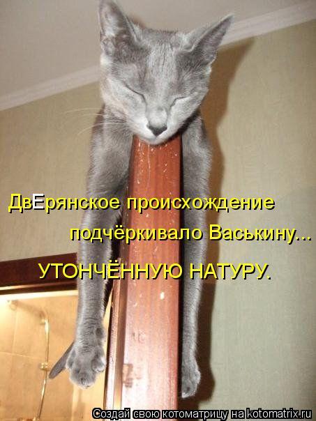 Котоматрица: Дв  рянское происхождение подчёркивало Васькину... УТОНЧЕННУЮ НАТУРУ. .. Е