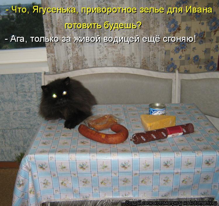 Котоматрица: - Что, Ягусенька, приворотное зелье для Ивана готовить будешь? - Ага, только за живой водицей ещё сгоняю!