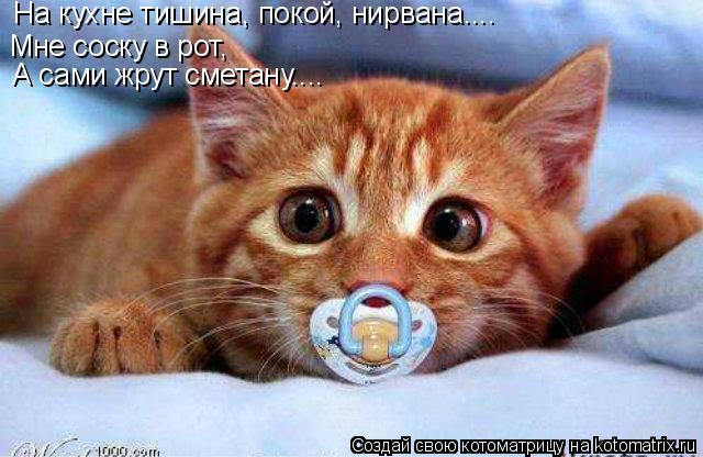Котоматрица: Мне соску в рот,  На кухне тишина, покой, нирвана.... А сами жрут сметану....