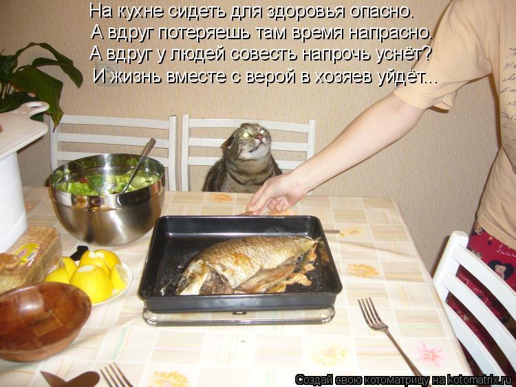 Котоматрица: На кухне сидеть для здоровья опасно. А вдруг потеряешь там время напрасно. А вдруг у людей совесть напрочь уснёт? И жизнь вместе с верой в хо