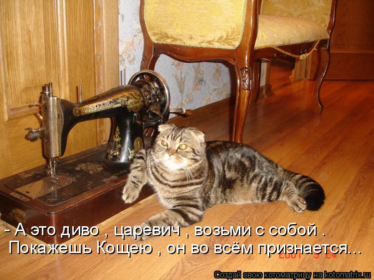 Котоматрица: - А это диво , царевич , возьми с собой . Покажешь Кощею , он во всём признается...