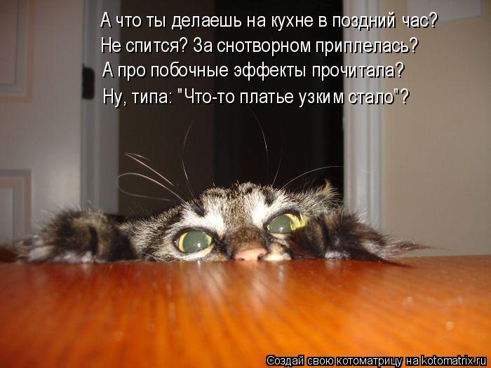 Котоматрица - А что ты делаешь на кухне в поздний час? Не спится? За снотворном прип