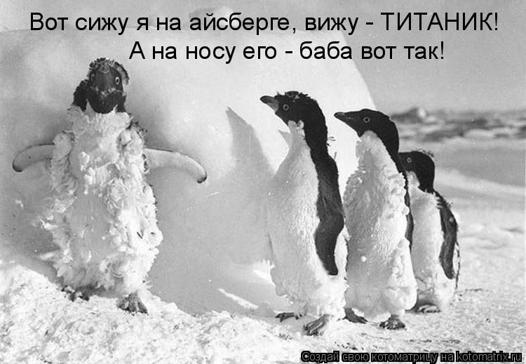 Котоматрица: Вот сижу я на айсберге, вижу - ТИТАНИК! А на носу его - баба вот так!