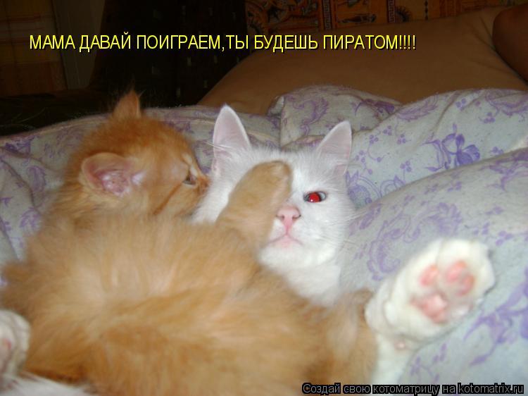Котоматрица: МАМА ДАВАЙ ПОИГРАЕМ,ТЫ БУДЕШЬ ПИРАТОМ!!!!