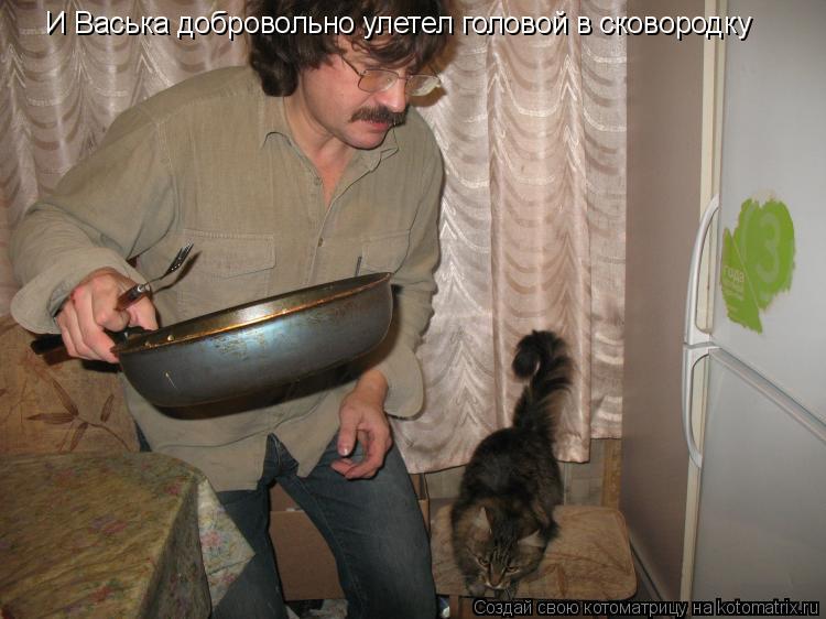 Котоматрица: И Васька добровольно улетел головой в сковородку