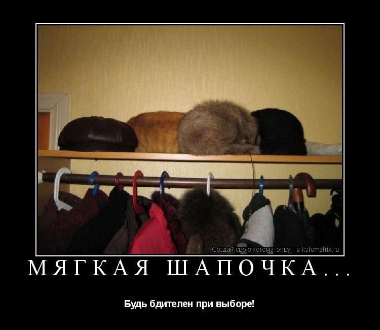 Котоматрица: Мягкая шапочка... Будь бдителен при выборе!