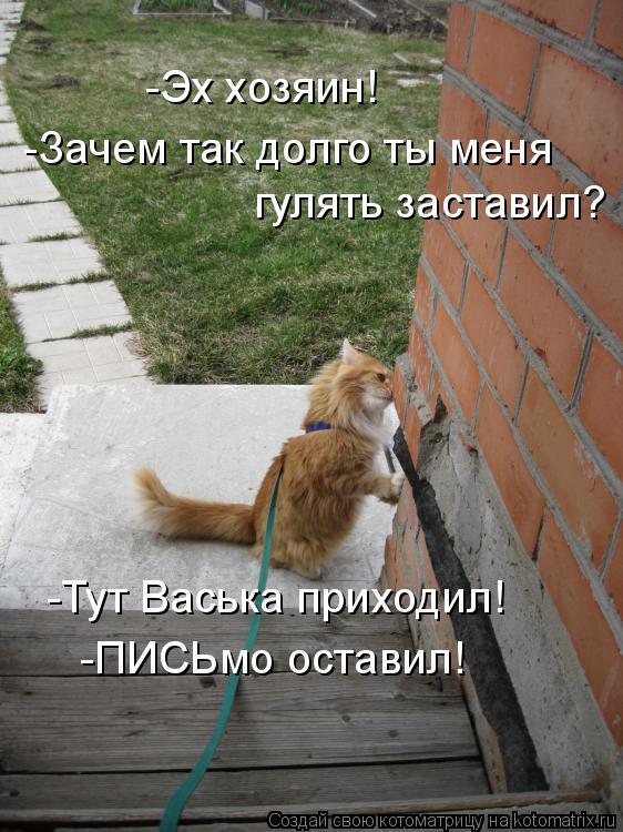 Котоматрица: -Эх хозяин! -Зачем так долго ты меня гулять заставил? -Тут Васька приходил! -ПИСЬмо оставил!