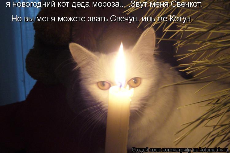 Котоматрица: я новогодний кот деда мороза.....Звут меня Свечкот. Но вы меня можете звать Свечун, иль же Котун.
