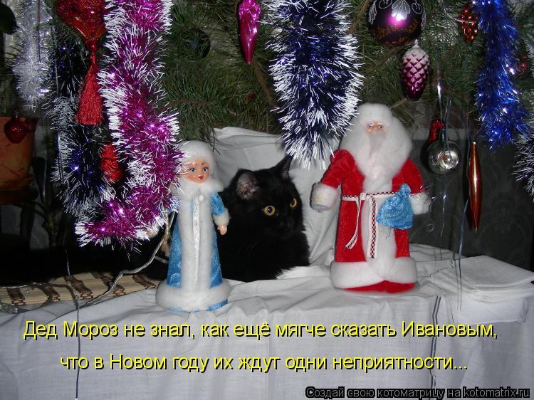 Котоматрица - Дед Мороз не знал, как ещё мягче сказать Ивановым, что в Новом году их