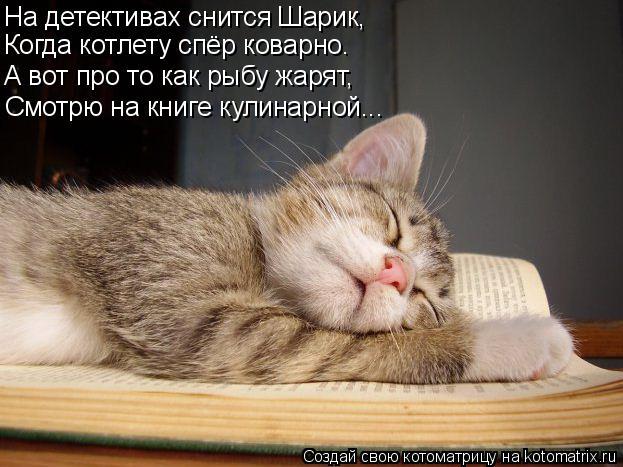 Котоматрица: Когда котлету спёр коварно. А вот про то как рыбу жарят, Смотрю на книге кулинарной... На детективах снится Шарик,
