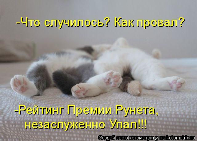 Котоматрица: -Что случилось? Как провал? -Рейтинг Премии Рунета, незаслуженно Упал!!!