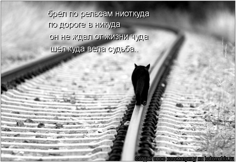 Котоматрица: брёл по рельсам ниоткуда по дороге в никуда он не ждал от жизни чуда шёл куда вела судьба..